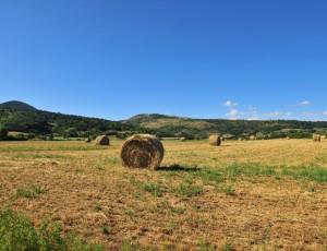 Rentières, Cézallier, Pays d'Issoire, Puy-de-Dôme, Auvergne