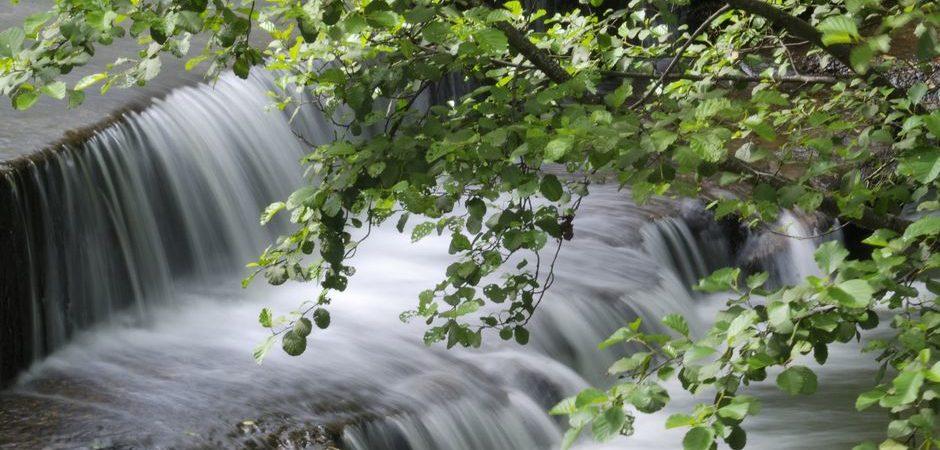 Cascade, couze Pavin © Michelle Baron