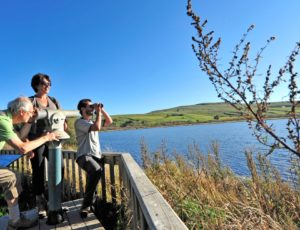Observation au lac d'en bas, réserve naturelle des sagnes de La Godivelle