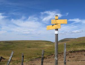 """Panneaux de signalisation sur la randonnée """"Le Signal du Luguet"""" dans le"""