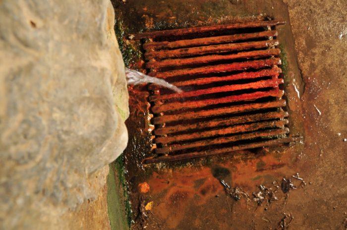 Source du Champ Robert, source d'eau salée à Coudes