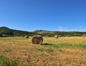 Rentières, Cézallier, Pays d'Issoire,Puy-de-Dôme, Auvergne