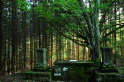 Début du chemin de croix sur la randonnée de la chapelle de Roche-Charles