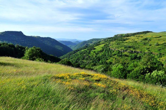 Paysages au départ de la randonnée de Roches Charles, dans le Cézallier en Auvergne