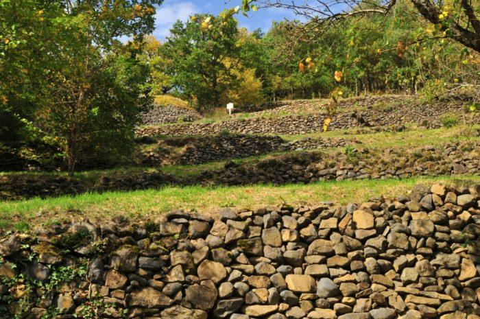 terrasses en pierres sèches ou pailhats à Courgoul, dans le Puy-de-Dôme
