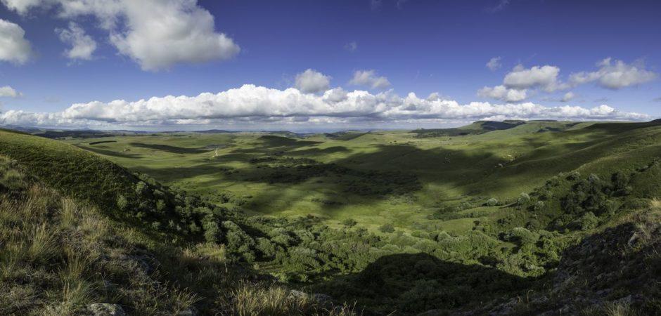 Le Cézallier depuis le mont Chamaroux @OTPI-Elyas-Saens