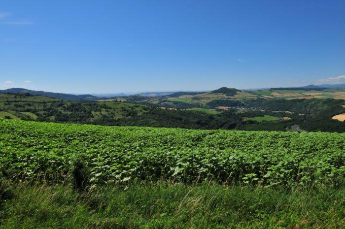 Vue depuis le village d'Yronde et Buron