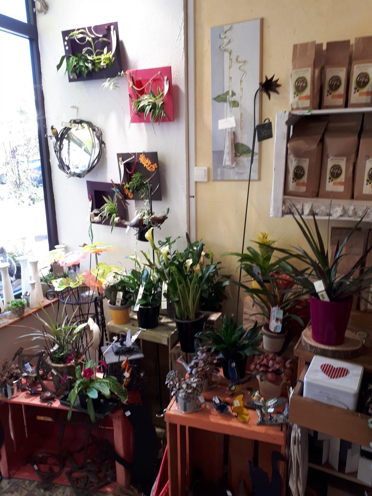 Empreintes végétales – Issoire