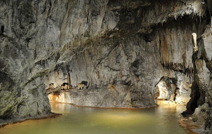 Les Fontaines Pétrifiantes de Saint-Nectaire
